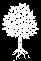 Bjoerk media Logo 2
